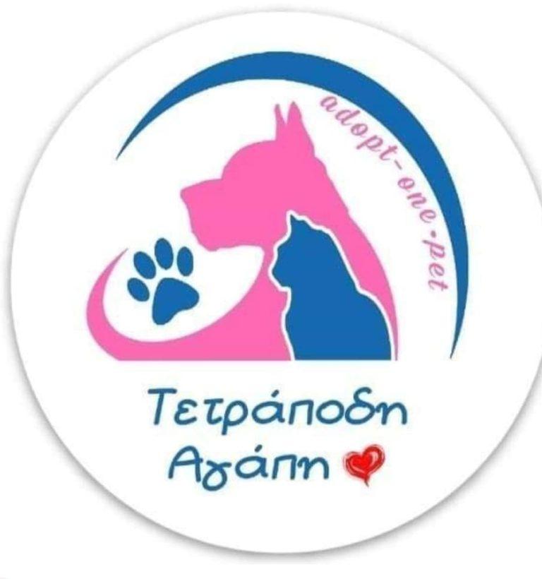 """Θεριεύει η… """"Τετράποδη Αγάπη"""" με δωρεάν παροχές στην υιοθεσία ζώων, από την Daedaluslife!"""