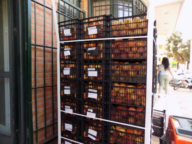 Διανομή 20 τόνων φρούτων σε άπορους από την Κοινωνική Υπηρεσία του Δήμου Φυλής